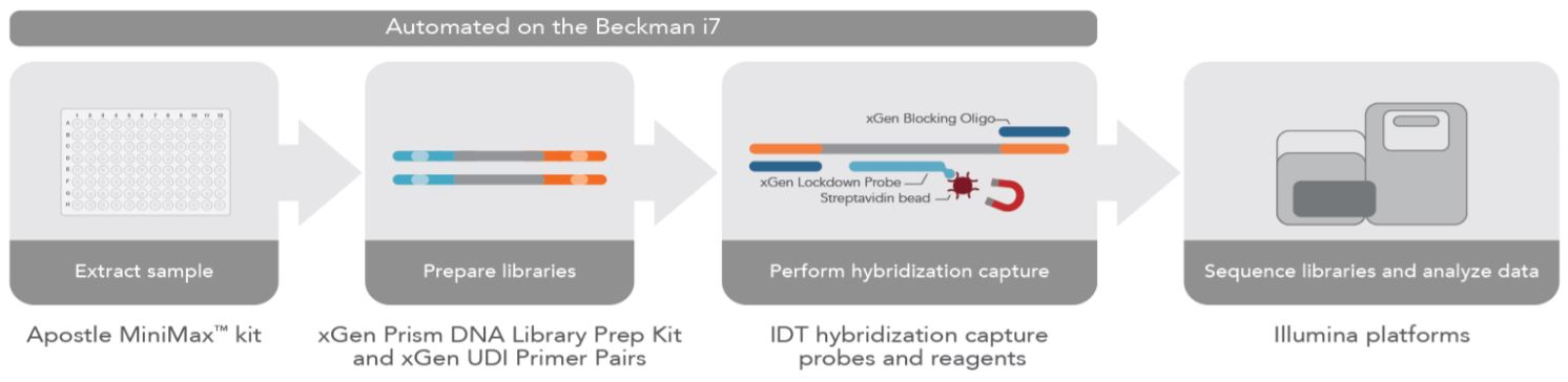 Figure 1: Complete NGS sample preparation workflow for cfDNA