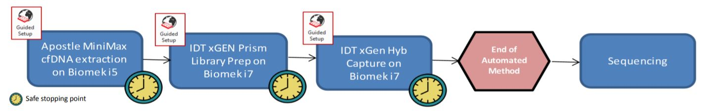 Figure 2: An end to end automated workflow from extraction to hybridization capture