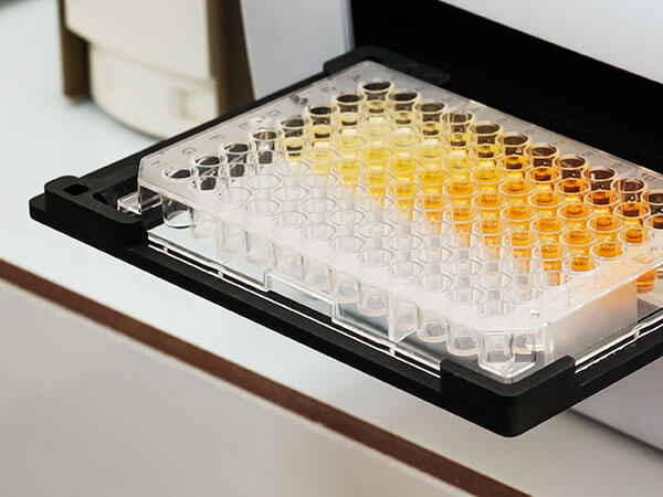 ELISA Cell Assay