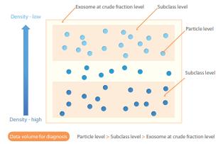 Chart 1 -Subclass Analysis