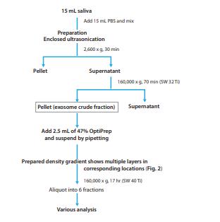 flow1 -Subclass Analysis