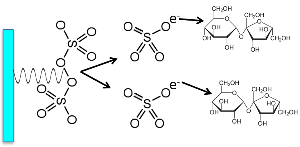 The UV reacts with the persulfate to form sulfate radicals which also oxidize organic compounds to CO2